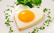 چند دستور غذای ساده با تخم مرغ