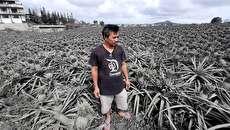 (تصاویر) خاکستر آتشفشانی روستاهای اطراف را پوشاند