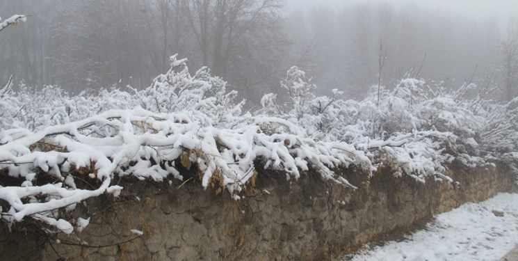 هشدار کولاک برف در برخی نقاط کشور