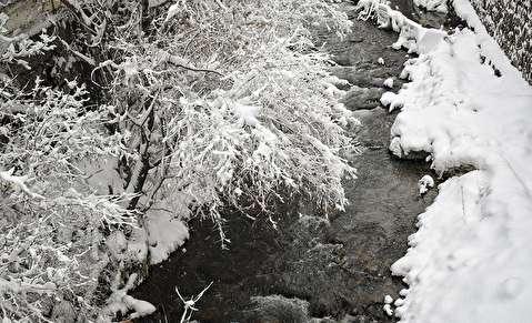 (تصاویر) برف در فشم