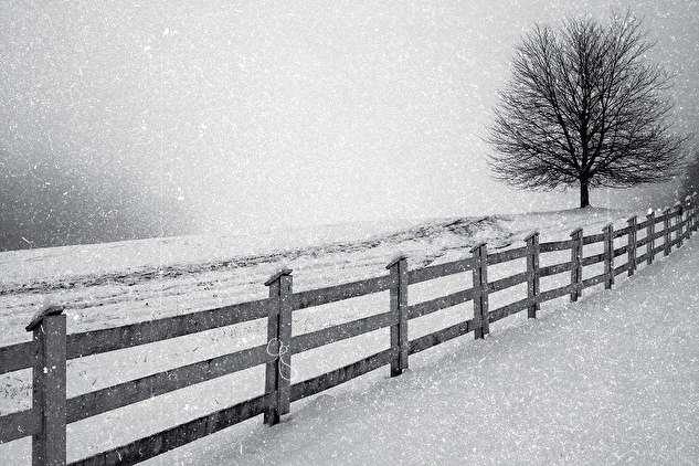 اولین برفِ تاریخ سینما در فیلمی از برادران لومیر