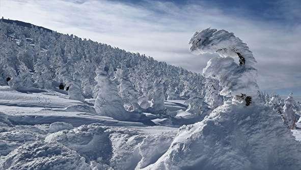 (تصاویر) هیولاهای برفی