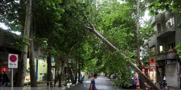 طوفان در تهران و ۶ استان دیگر از عصر جمعه