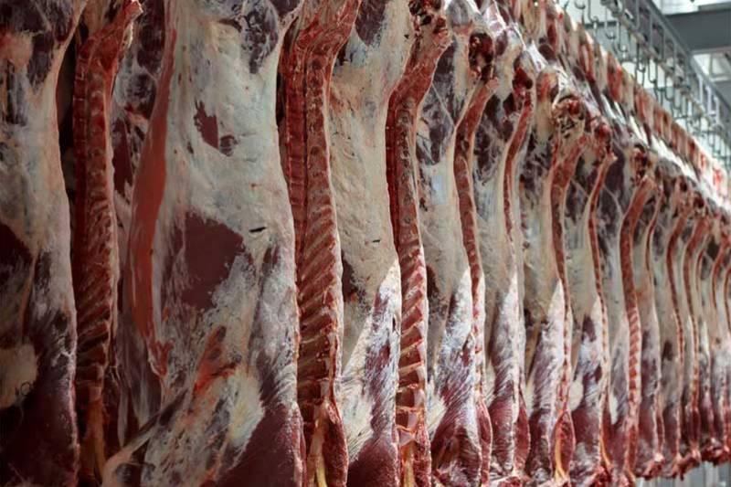 امسال قیمت گوشت قرمز افزایش نمییابد
