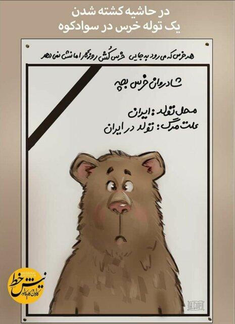 ماجرای جنجالی کشتن یک توله خرس در سوادکوه