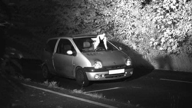 'روح القدس' راننده آلمانی را از جریمه شدن به دلیل سرعت غیرمجاز نجات داد