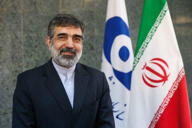 کمالوندی: سطح غنیسازی ایران به 4.5 درصد رسید
