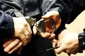 زن و شوهر دزد، اموال گردشگر ایرلندی را در قزوین غارت کردند!