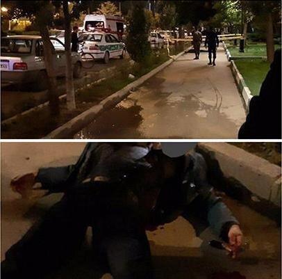 (تصویر) قتل هولناک مرد اردبیلی در مقابل دانشگاه