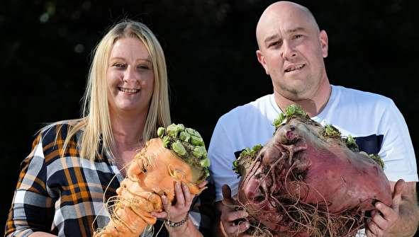 (تصاویر) مسابقه و نمایشگاه سبزیجات غول پیکر
