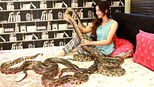 (تصاویر) خواننده زن به دلیل نگهداری مار، شیر و تمساح به دردسر افتاد!