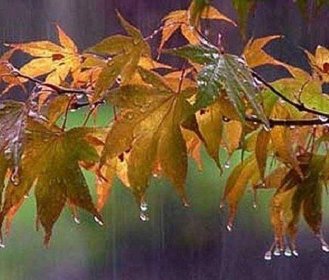 وضعیت بارش باران در مهر و آبان ۹۸