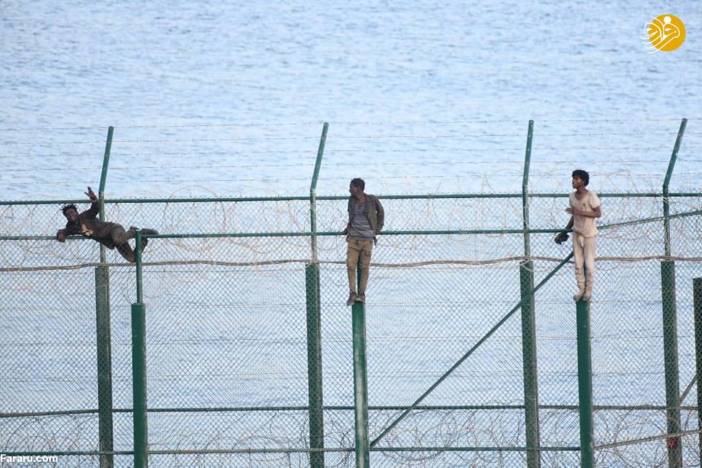 (تصاویر) هجوم پناهجویان به اسپانیا با گذر از سیمهای خاردار
