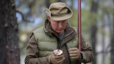 (تصاویر) پوتین در روز تولد ۶۷ سالگیاش به جنگلهای سیبری رفت