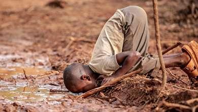 تصاویر برگزیده مسابقه عکاسی محیط زیست در سال ۲۰۱۹