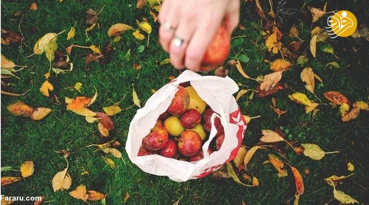 مزایای ۵ میوه پاییزی برای سلامت روان