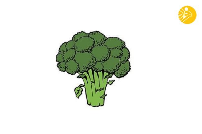 ۱۰ خوراکی مفید برای کاهش خطر ابتلا به بیماری آلزیمر
