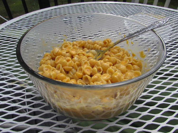 (عکس) ماجرای پسری که ۱۷ سال فقط ماکارونی و پنیر خورده است!