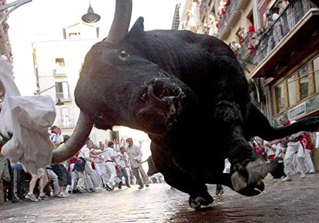 (ویدئو) حمله گاو خشمگین به مردم