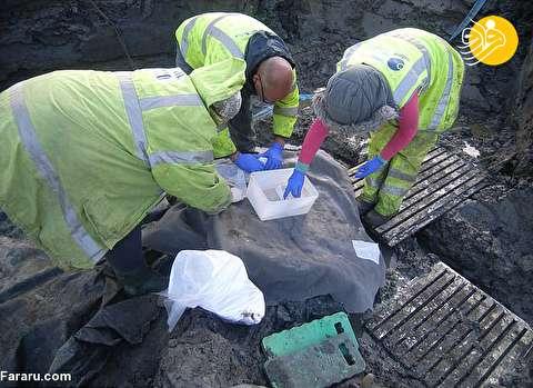 (تصویر) کشف تخم مرغ ۱۷۰۰ ساله!