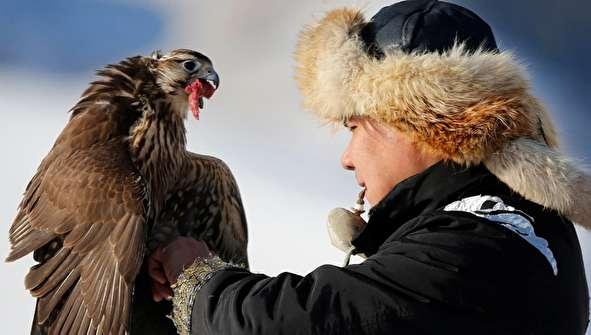 (تصاویر) مسابقه شکار با عقاب و شاهین در قزاقستان