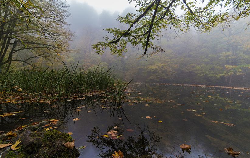 سفر به دریاچه فراخین؛ طبیعتگردی آبی سرزنده در دل جنگلهای نارنجی