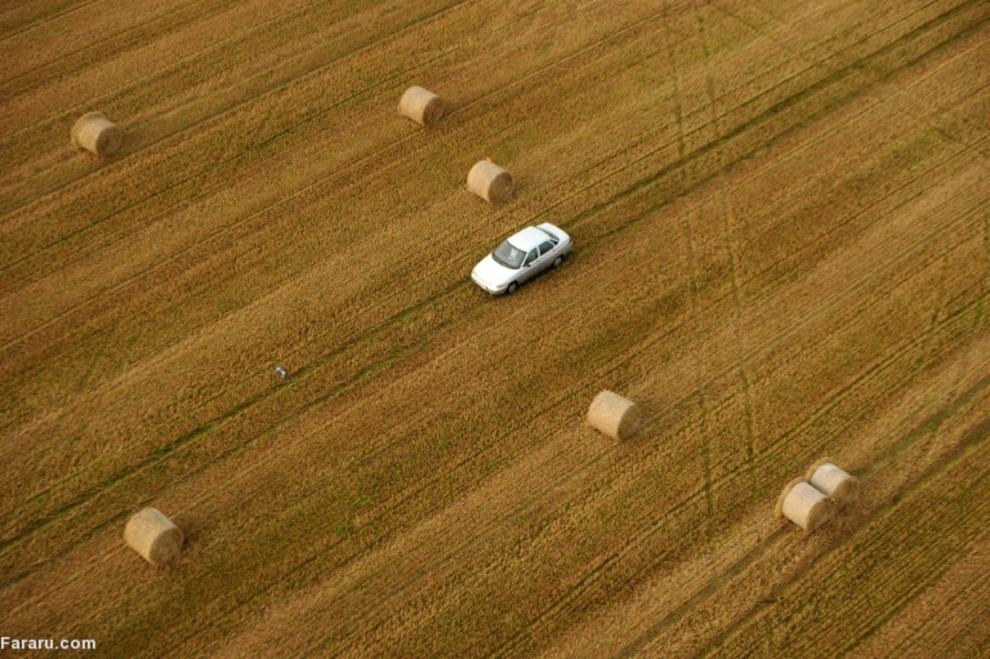 مزرعه یونجه در مینسک