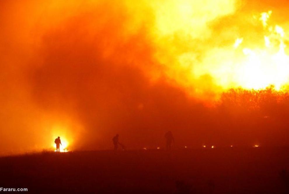 آتش سوزی در جنگلهای شیلی