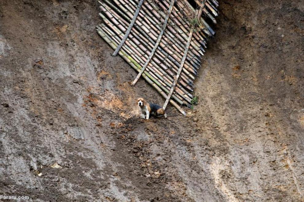 بارانهای سنگین در کلمبیا