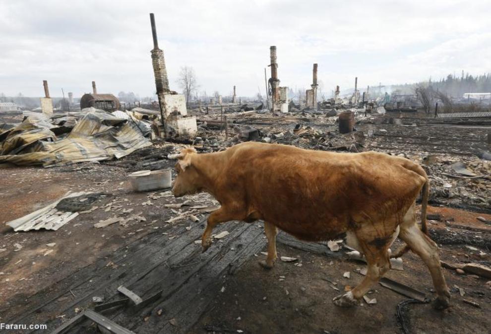 آتش سوزی در روسیه