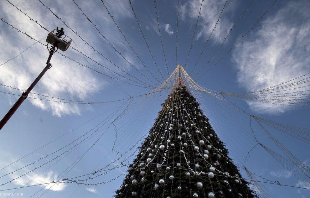 درخت کریسمس در لیتوانیا