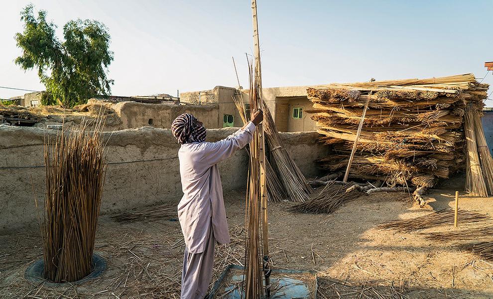(تصاویر) حصیربافی در سیستان و بلوچستان|2797396