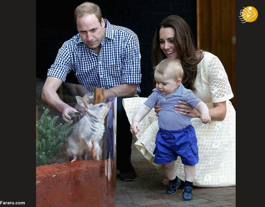شاهزاده ویلیام، همسر و پسرش در باغ وحشی در استرالیا