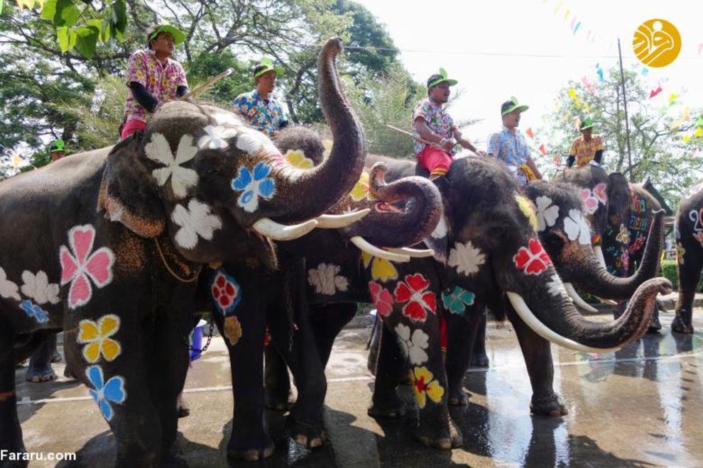تصاویری از جشنواره هیجان انگیز آب بازی در تایلند