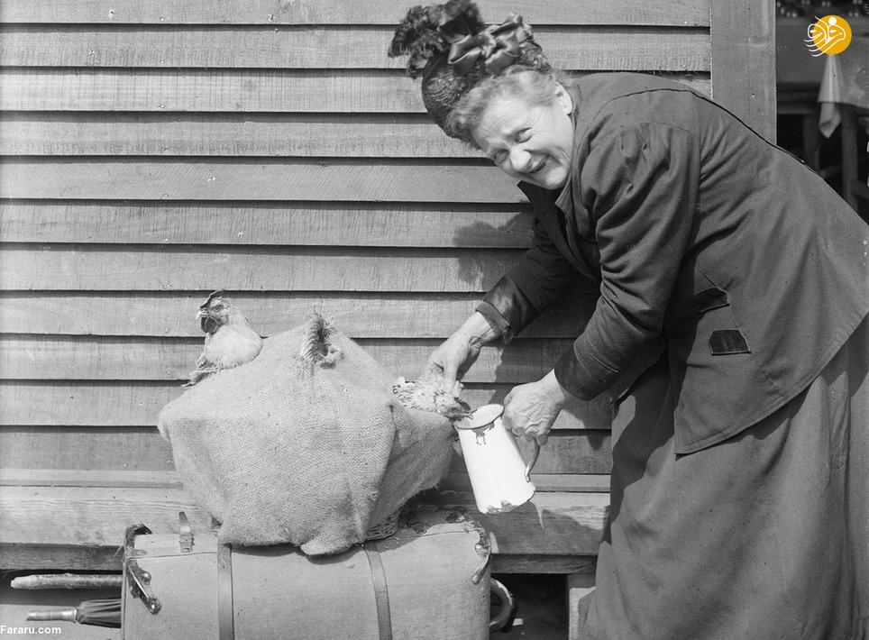 زن فرانسوی که آلمانیها او را مجبور به ترک خانهاش کردند و درهنگام فرار تنها توانسته چمدان لباسهایش و  دو حیوان خانگی اش را با خود به پاریس ببرد