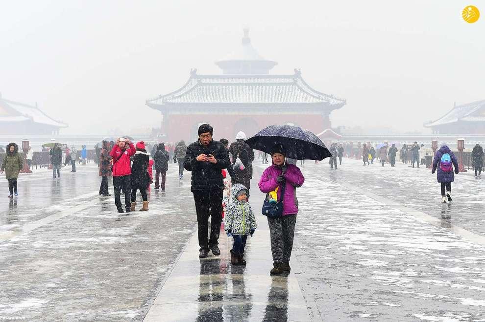 پکن، چین
